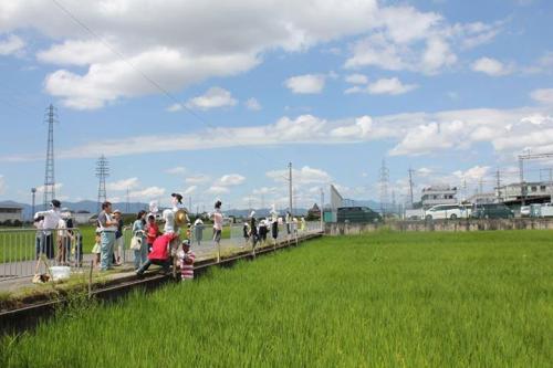 お米を守ろう!巨椋池かかし祭